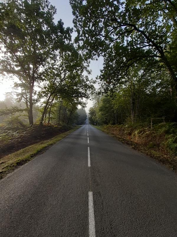 Route départementale jusque Moustey