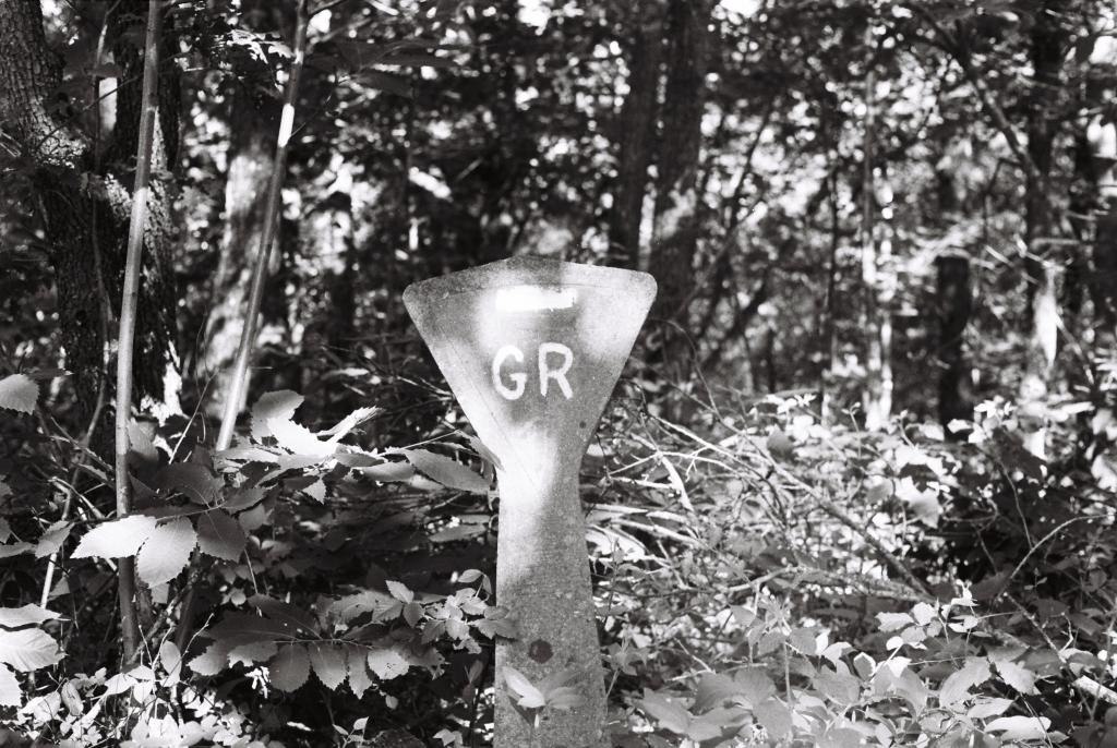 Balisage du GR1 pour randonner à Fontainebleau