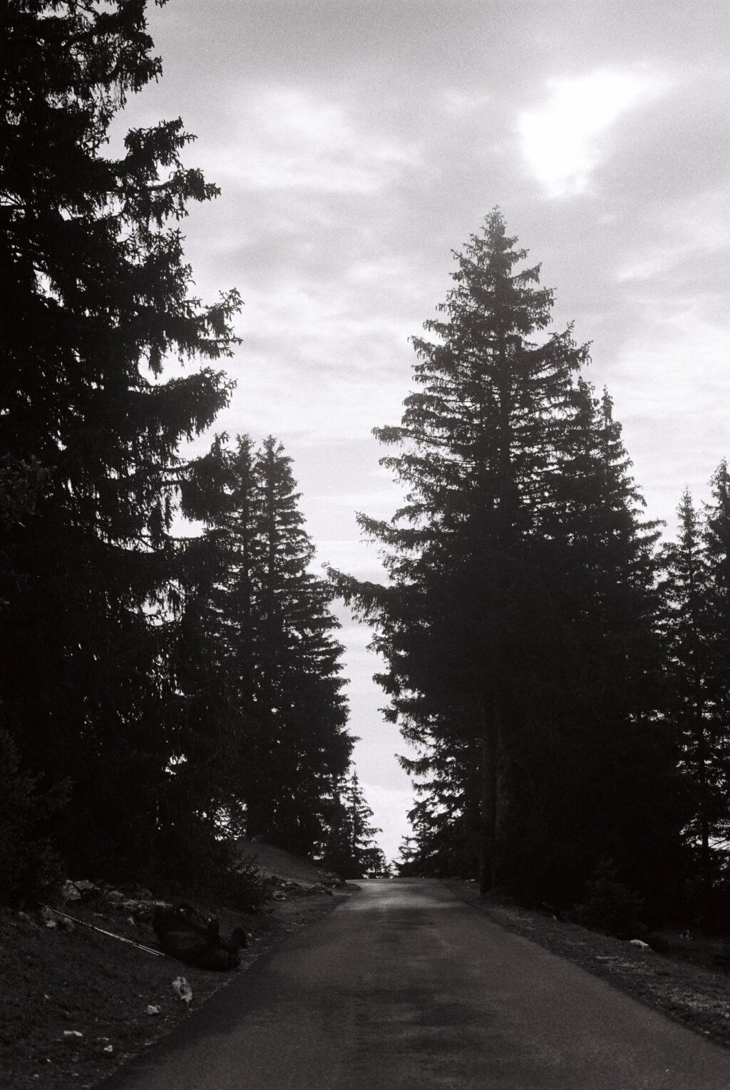 Route dans le Jura Suisse